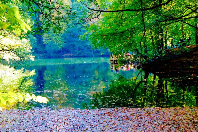 Yedigöller Fotoğraf Turu