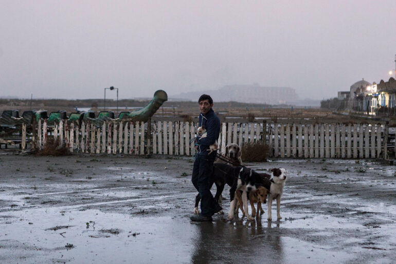 Dogman - Film İncelemesi